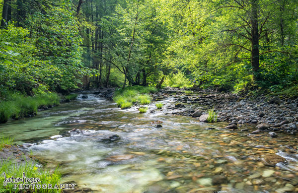 Umpqua River at Horsehose Bend Campground. Copyright Jessica Tomlinson of JATomlinson Photography