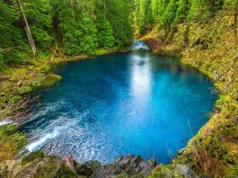 Tamolitch Blue Pool Oregon