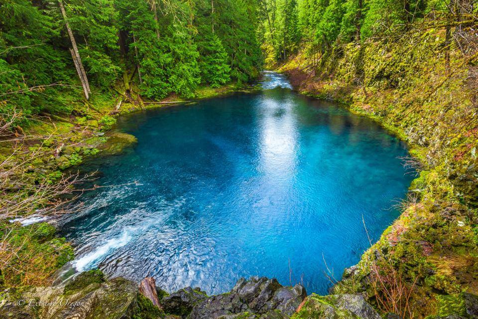Tamolitch blue pool Cliff Tamolitch Blue Pool Oregon That Oregon Life The Blue Pool Is One Amazing Place In Oregon You Need To See For