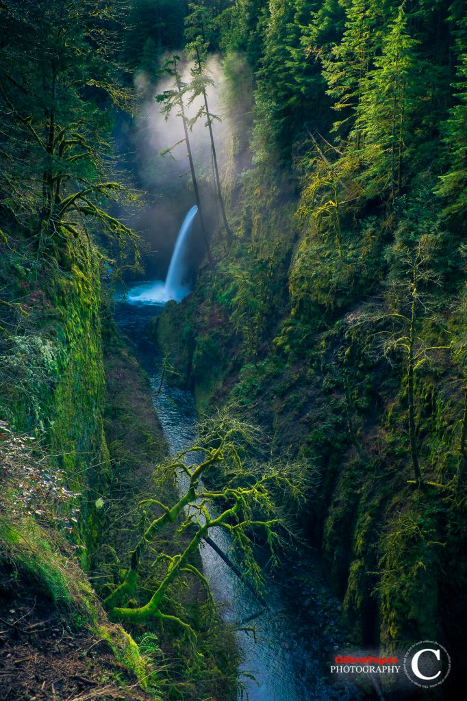 clifford paguio - metlako falls