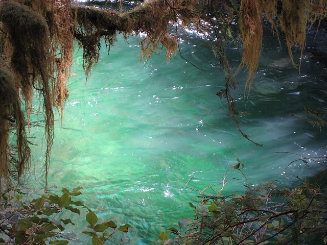Opal-Creek-Wilderness-area