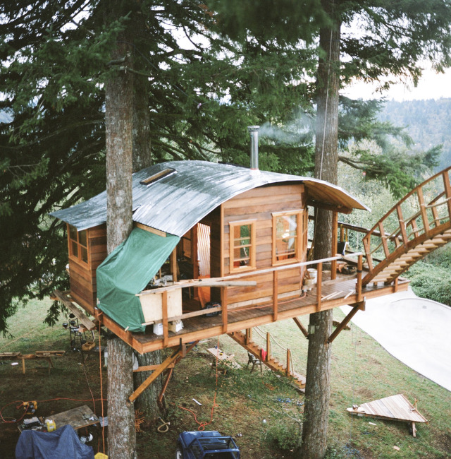 He Quit His Job To Build Amazing Tree House In The Pacific
