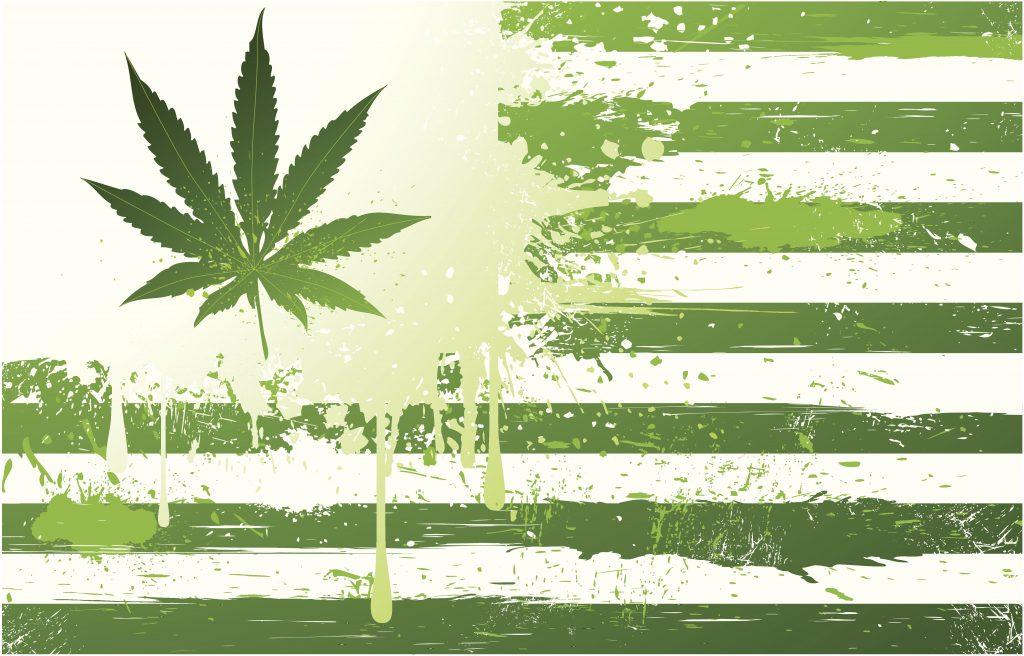 Marijuana States of America