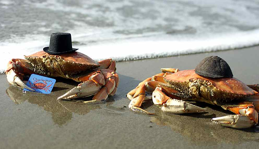 20 things every true oregonian should do at least once for Crab fishing oregon
