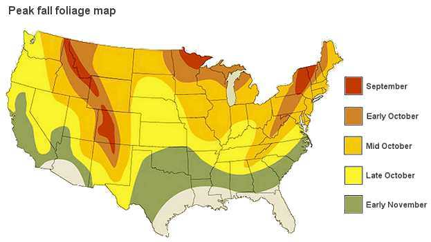 Will Oregon Have Strong Fall Foliage In 2015 Check Out