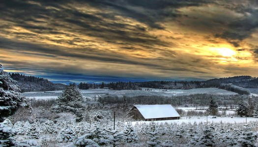 White Christmas: 15 Beautiful Snowy Landscapes in Oregon
