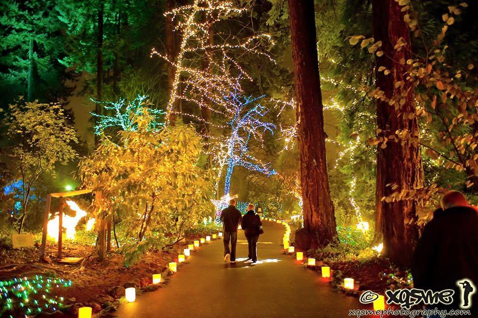 Here Are the Best 13 Places in Oregon to See Christmas Lights