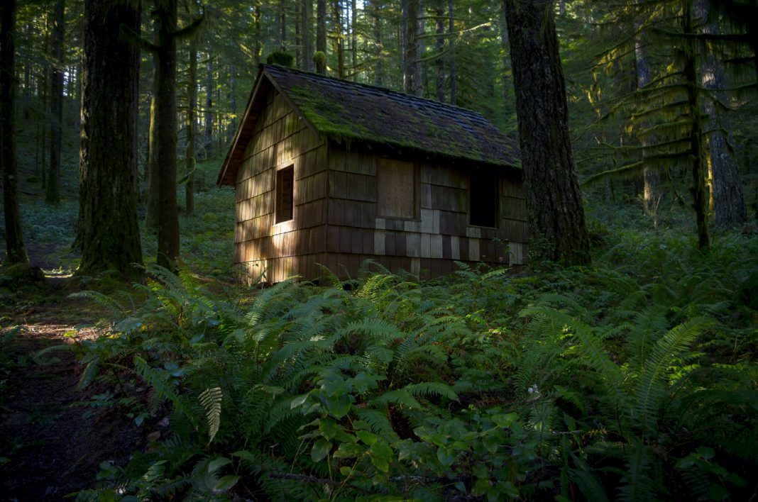 25 abandoned places in oregon that are downright awesome for Cabin in the woods oregon