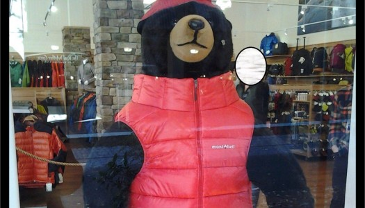 Man Arrested after Stealing Vest from Stuffed Bear in Portland