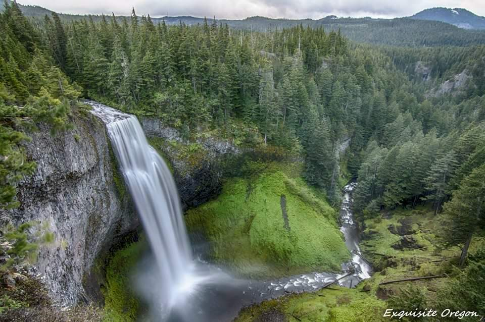 Salt Creek Falls [Image courtesy of Jeff Bryant / Exquisite Oregon]