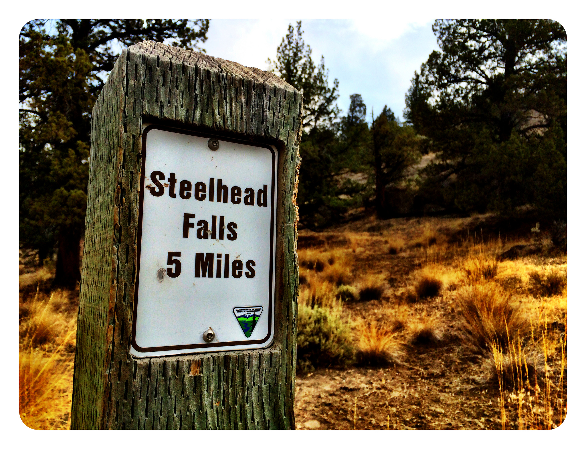 Steelhead Falls sign (Image courtesy of BLM / Flickr)