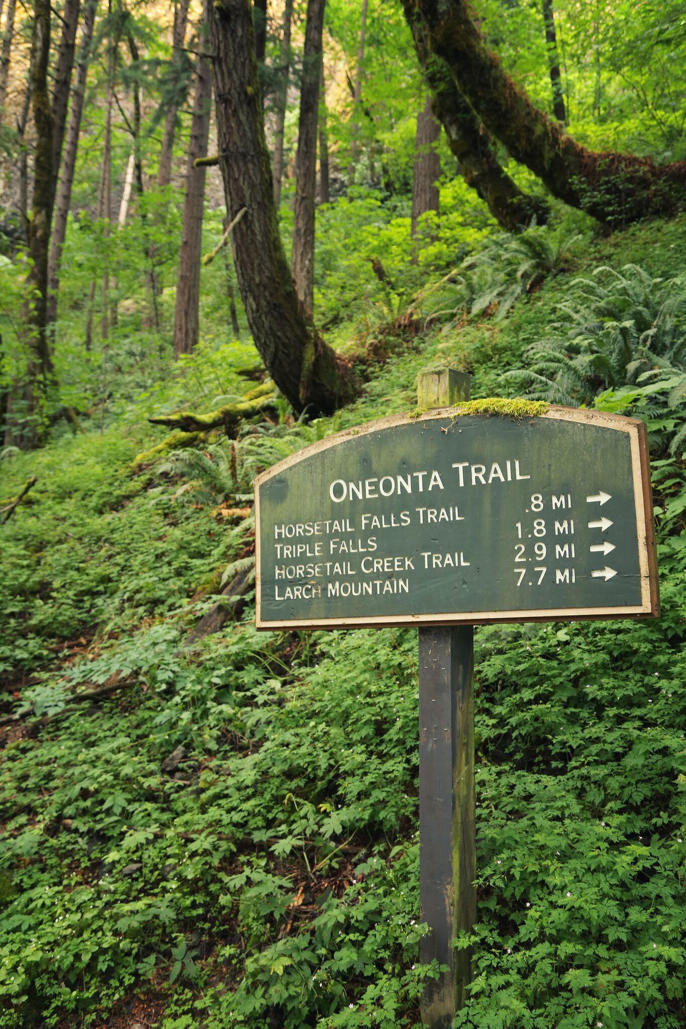 oneonta trail