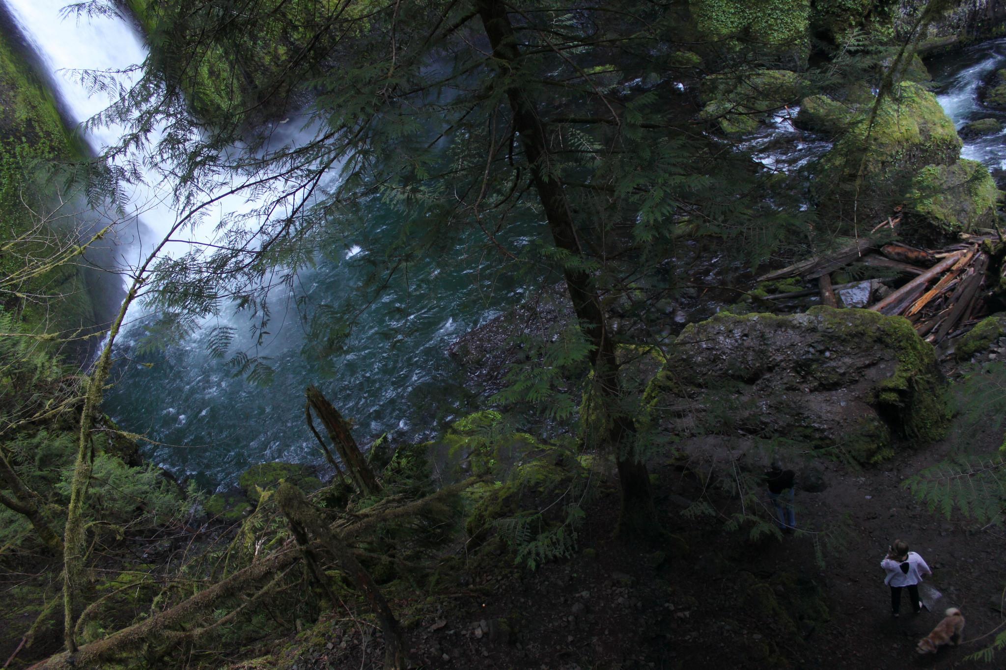 Wahclella Falls (Eli Duke / Flickr)