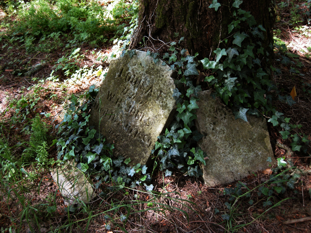 Broken headstone / bigbummedgirl