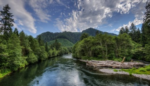 6 Must-See Spots and Best Parts of The McKenzie River in Oregon
