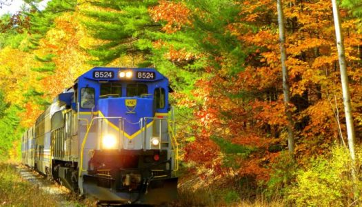 Oregon's Gorgeous Fall Foliage Train Ride Is Departing Now