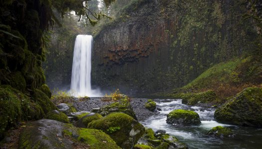 Abiqua Falls is One of Oregon's Most Gorgeous Waterfalls