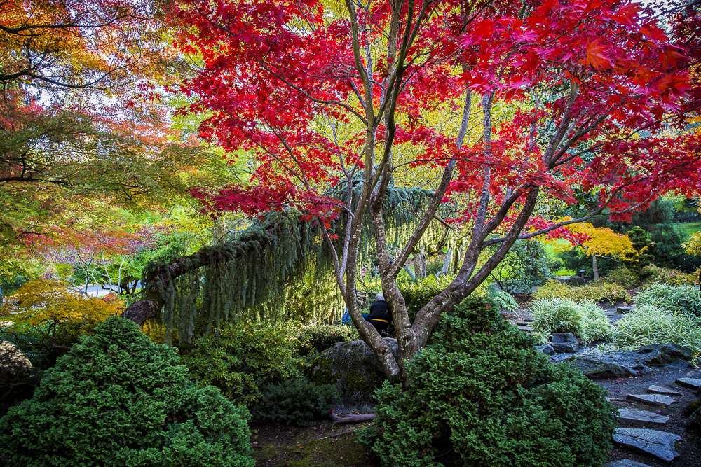magic_gardens_oregon