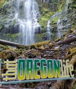 oregon-ducks-decal-04