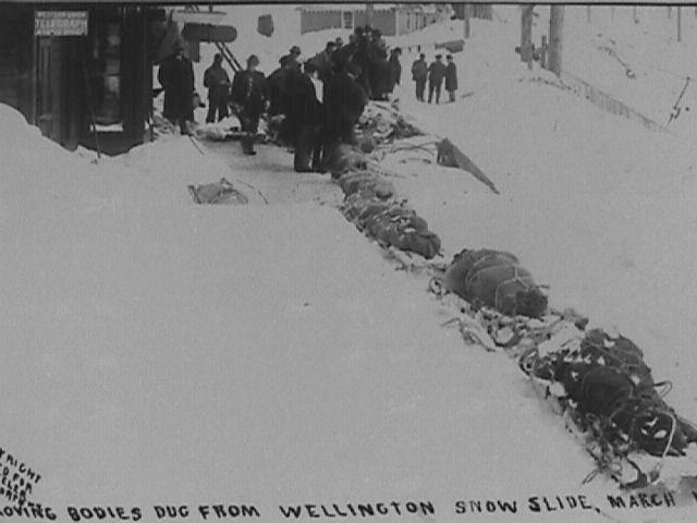 The Wellington avalanche victims had to be taken out by sled as it took 12 days to dig out the tracks
