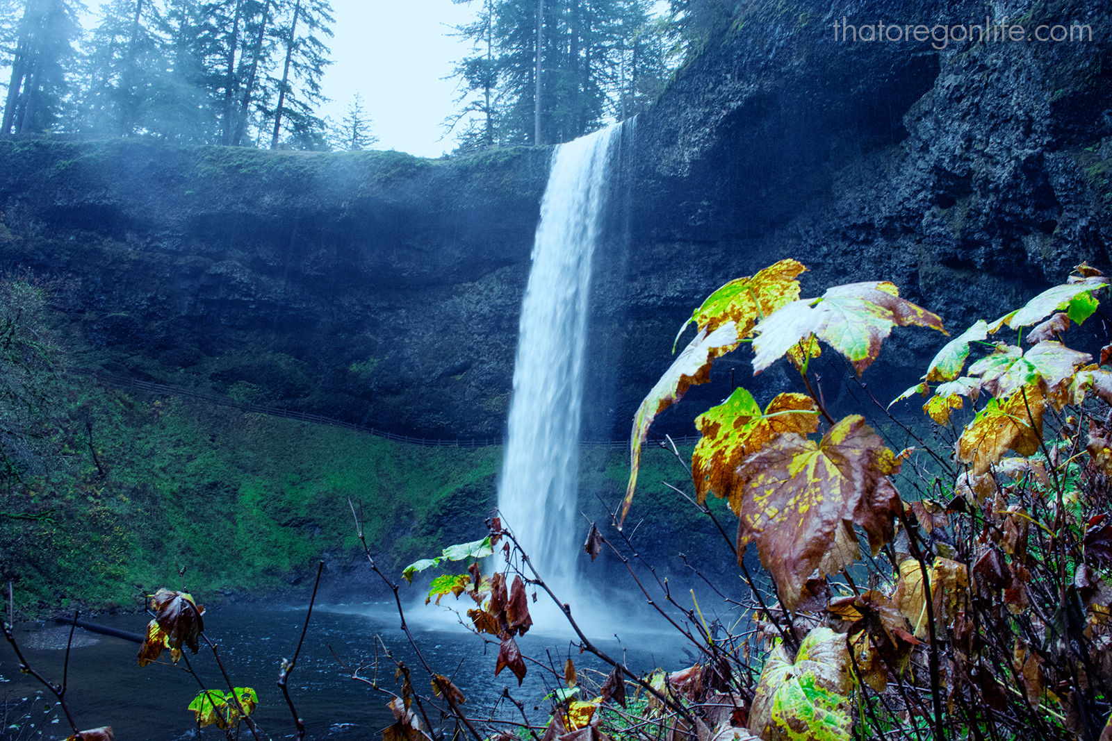 The Largest State Park in Oregon is Out of This World ...
