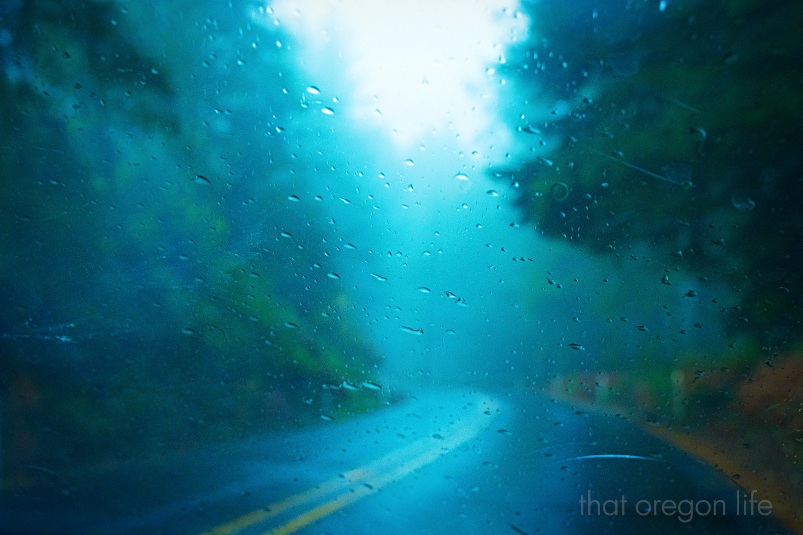 road1600