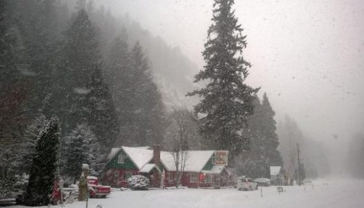 Not Many People in Oregon Know This Christmas Store Exists
