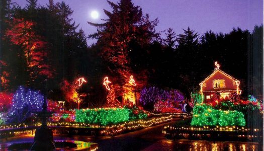 The Ultimate Oregon Coast Christmas Light Tour is Happening Now