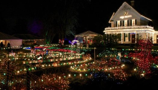 Winterville Offering Hard Cider Gardens, Christmas Lights, Music & More