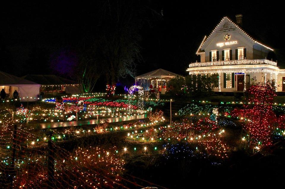 Oregon Gardens Christmas.Winterville Offering Hard Cider Gardens Christmas Lights