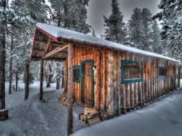 Cabin Rentals Archives   That Oregon Life