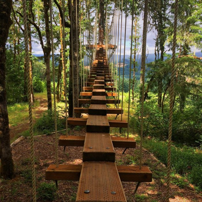 Add Tree To Tree Adventure Park in Oregon To Your Bucket ...