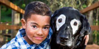 Oregon-dog-vitiligio