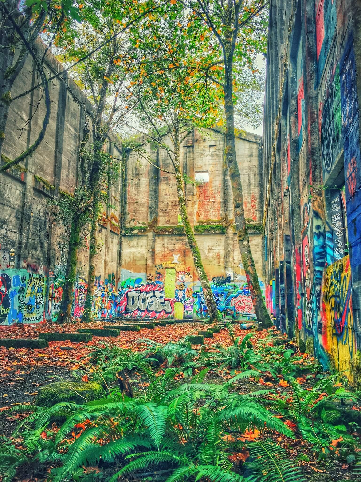 Abandoned Mill Vernonia Oregon