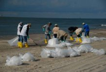 Plastic Beach Clean Up Solve Oregon Plastic Problem