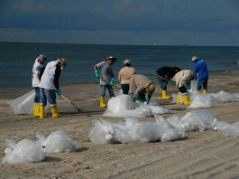 Plastic Beach Clean Up Solve Oregon Plastic Problem