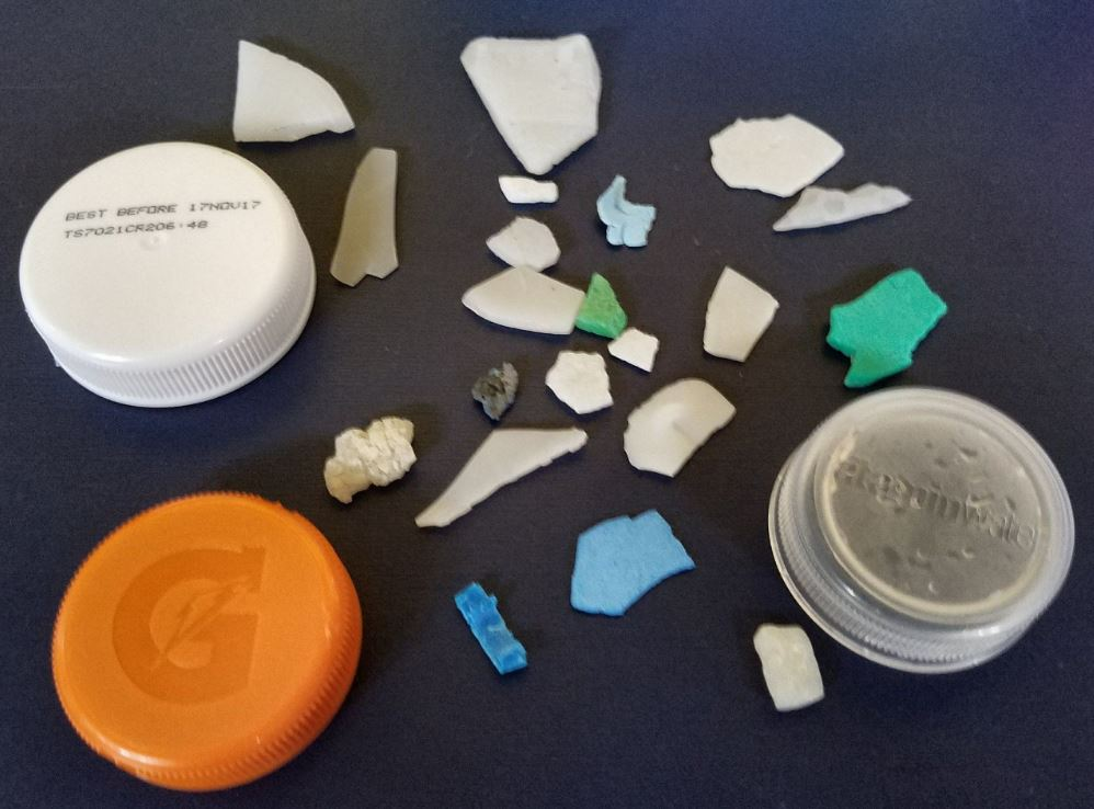 Solve Oregon Beach Micro Plastic Problem