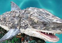 The Washed Ashore Project - Sharks in Oregon