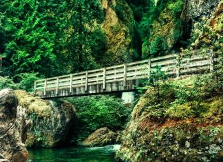 Wahclella Falls Adventure Hike