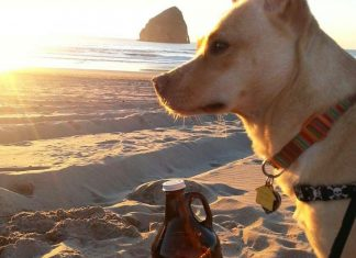 Microplastic Beach Cleanup on Oregon Ocean Day with Pelican Brewing
