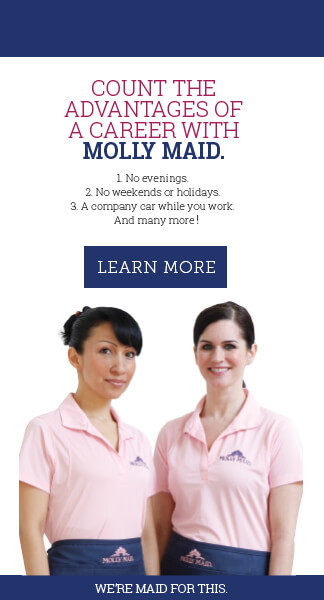 Career With Molly Maid