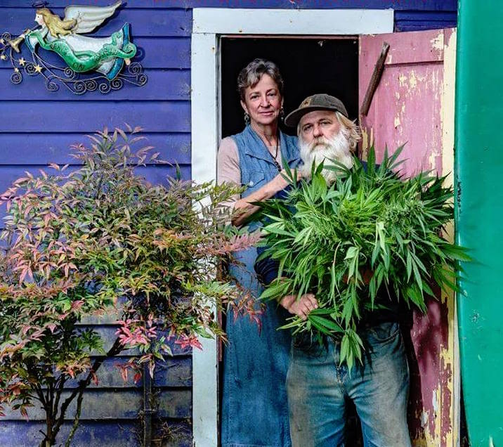 Organic Marijuana Grower - Farmer Tom Certified
