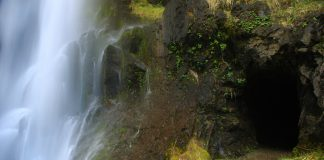 Henline Falls Oregon