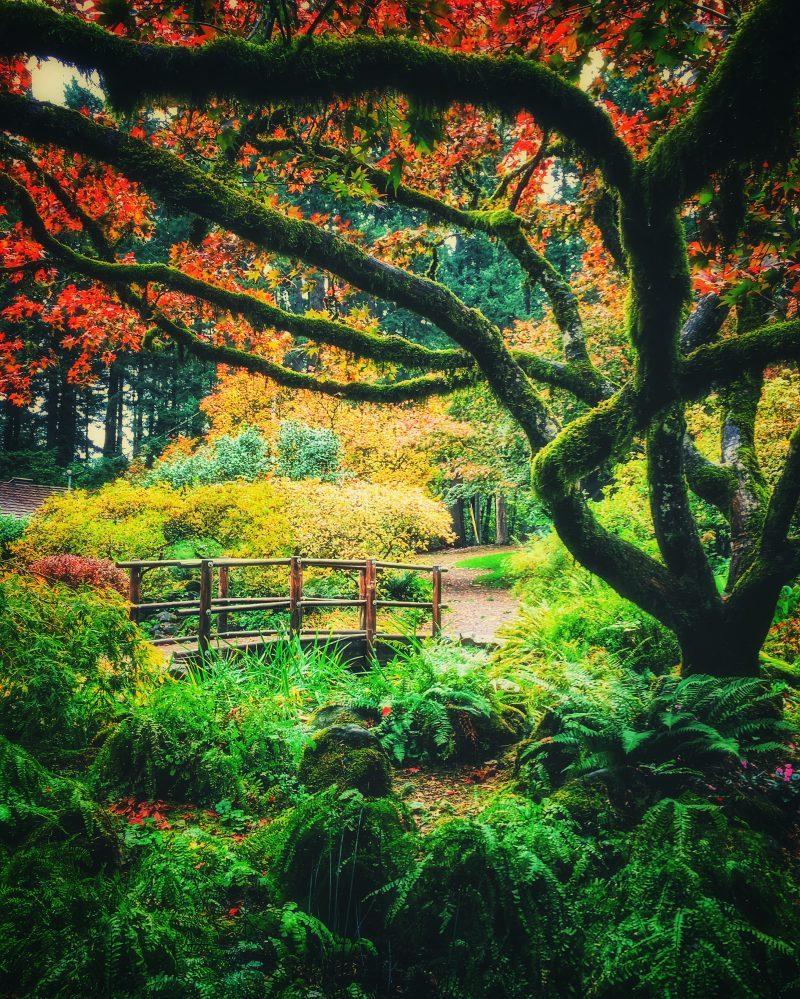 Garden Of Eden Landscape: The Garden Of Eden Is Located In Beaverton