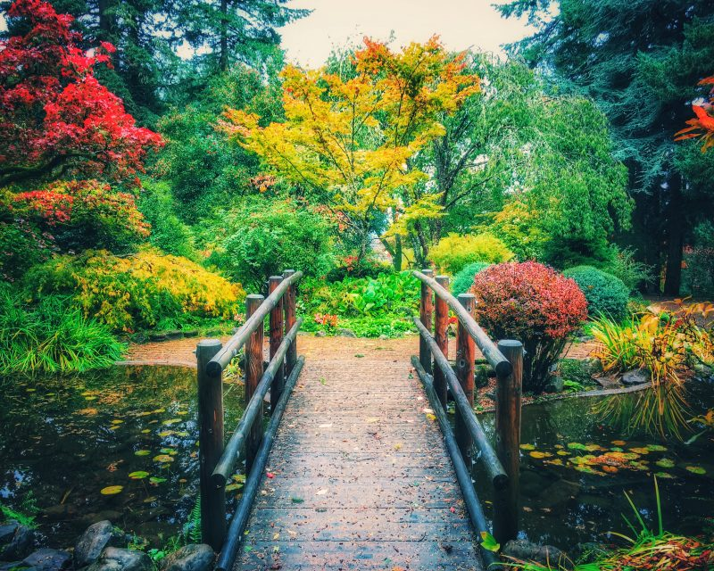 The Garden of Eden Is Located in Beaverton | That Oregon Life