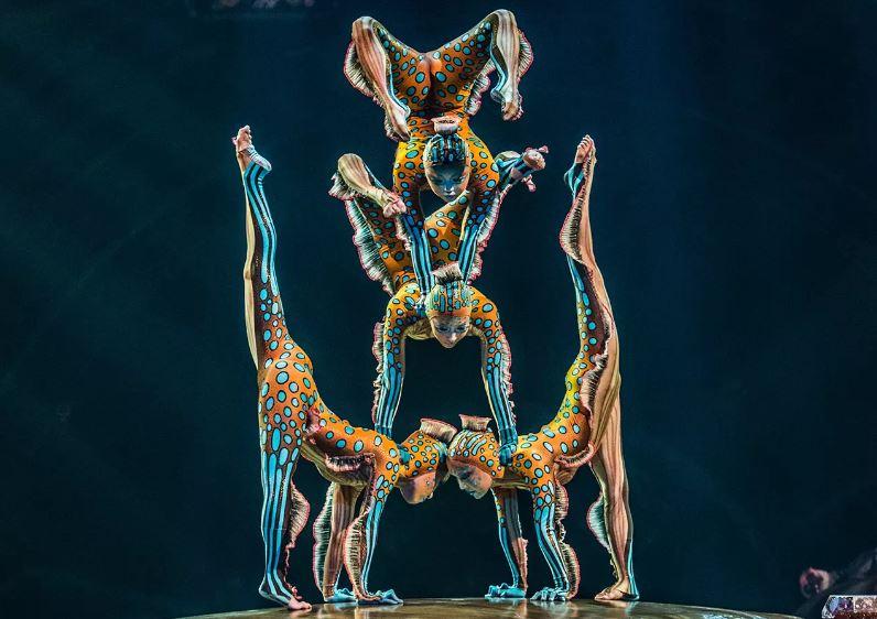 Cirque du Soleil Kurios Contortionists