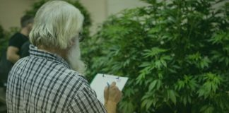 Oregon Cannabis Growers Consumers Fair