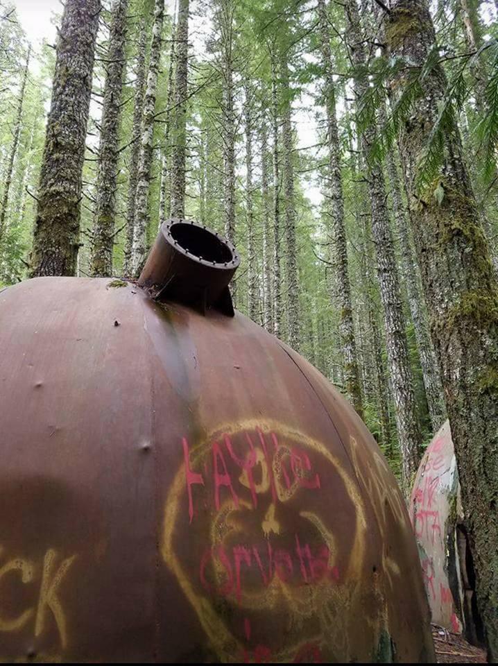 Pod Home Oregon Forest