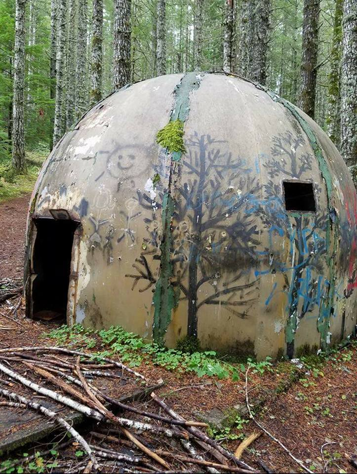 Abandoned Pod Homes Found In Oregon Forest That Oregon Life