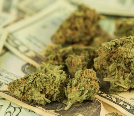 Oregon Cannabis Tax Revenue